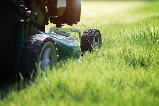 Garten- und Grünpflege